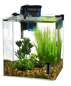 Penn Plax vertex betta fish tank aquarium kit