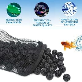 Cleaning Biological Filters
