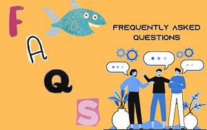aquarium filter media Faqs