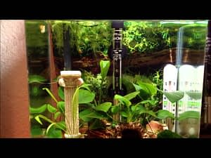 Betta-Fish-Tank-Heaters