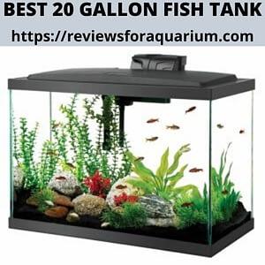 best 20 gallon fish tank logo