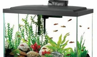 best 20 gallon fish tank logo